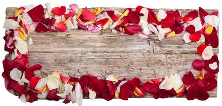 장미 테이블에 꽃잎 나무 상위 뷰 파노라마 클리핑 패스와 함께 흰색에 격리