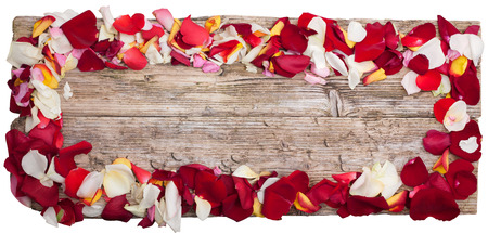 petals of roses on table wooden top view panoramic isolated on white with clipping path