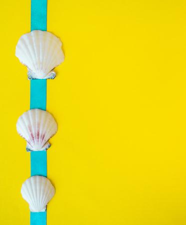 Seashells with light blue ribbon on yellow background like a postcard 写真素材 - 120113370