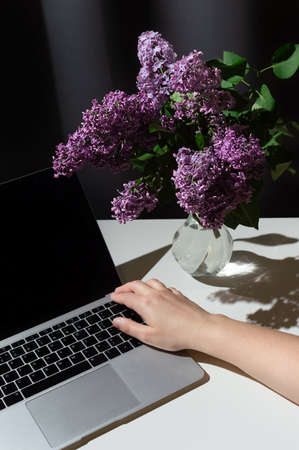 Still life of bright branch of lilac in the glass vase with open laptop and hand on it on white table on grey curtains background