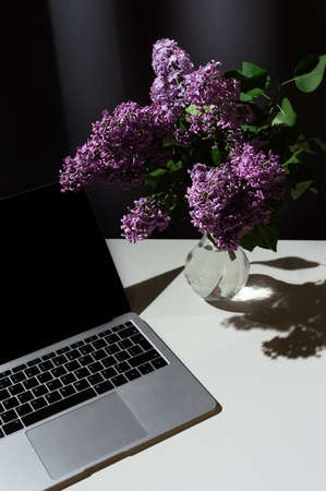 Still life of bright branch of lilac in the glass vase with open laptop on white table on grey curtains background 版權商用圖片