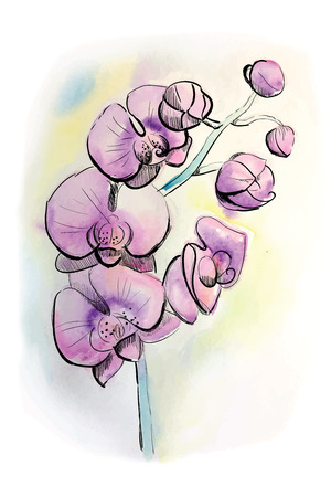Watercolor lilac orhid Ilustracja