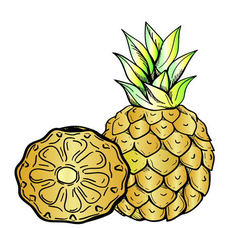 Ripe pineapple and half pineapple - closeup on an isolated white background. Tasty and useful fruit. Illustration