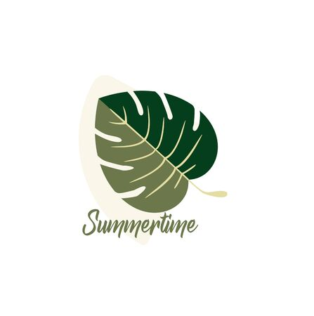 Summer vector design - tropical leaf of Monstera plant close-up isolated. Exotic leaves - summer style Illustration