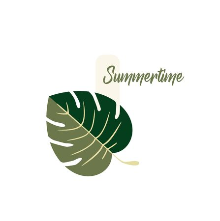 Summer Vector Design - Tropical Monstera Leaf Plant Close-up - Summer Time