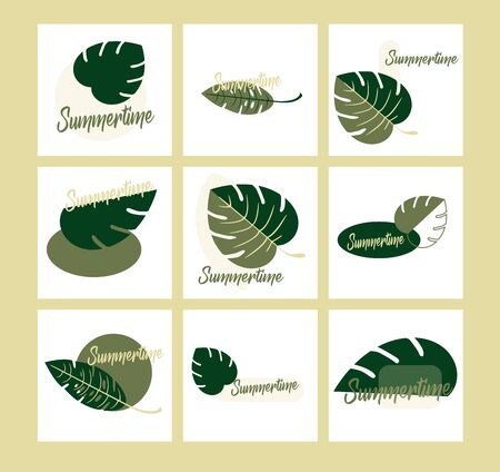 Flat design vector set of exotic leaves. Closeup. The beautiful leaves of Monstera and fern - summer time botany style. Illustration