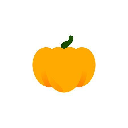 Orange pumpkin closeup vector isolated icon. Thanksgiving Symbol and Halloween. Autumn Pumpkin Harvest