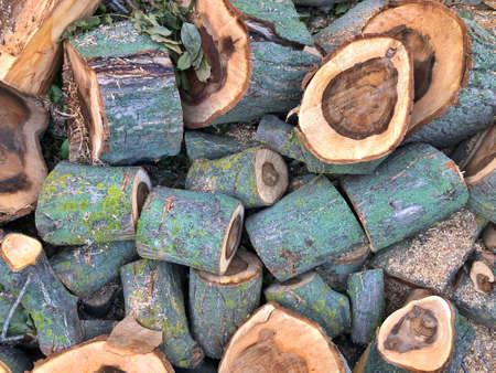 beautiful pattern of walnut wood texture. antique walnut tree. A sawn tree, a stack of logs.
