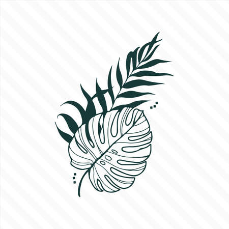 Hand drawn branches and leaves of tropical plants. P