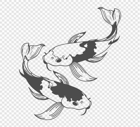 carp sketch on transparent background. Freehand japanese carp tattoo, vector illustration Stock Illustratie