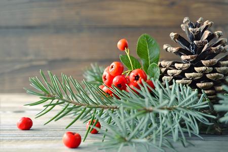 自然のクリスマス装飾