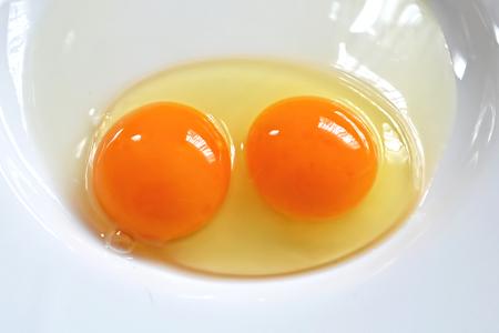 twin: Twin yolks