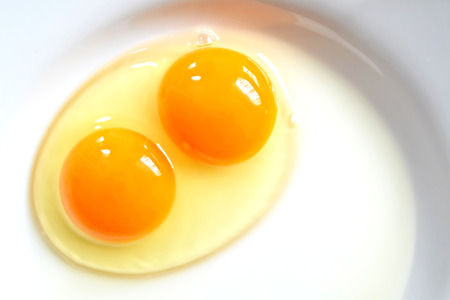 Raw two-yolk egg on the plate Imagens