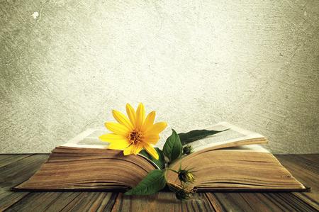 テクスチャ背景を持つ開かれた古い本の黄色い花