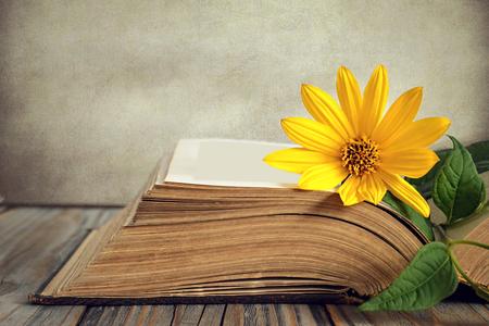 古い本と黄色の花を開く 写真素材