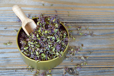 thyme: Thyme
