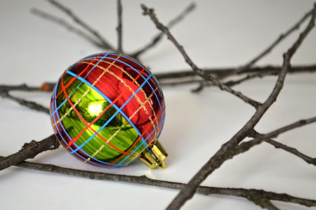 twigs: Christmas ball and twigs