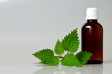 stinging: Stinging nettle essential oil in a bottle