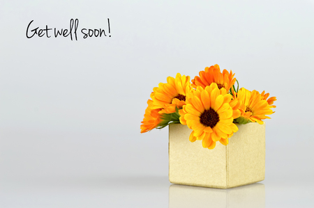 get well: Get well soon card