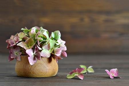 flower petal: Hydrangea flowers