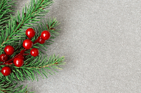Christmas background: Christmas tree branches and holly berries Reklamní fotografie