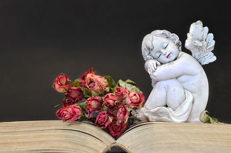 bible flower: Sleeping angel and roses on old book