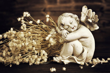 Angel and dry flowers