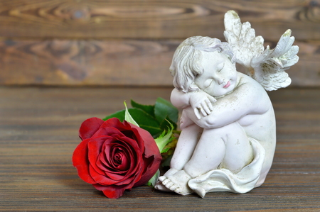 Little angel and rose Stock Photo