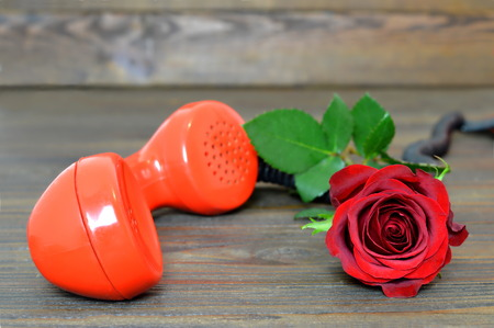 Happy Valentines Day: Red rose and vintage telephone