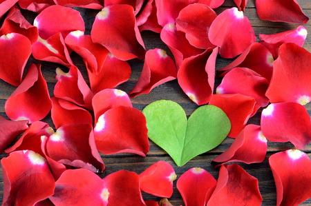 false shamrock: Valentines Day background: Heart shaped leaf and red rose petals on wooden background