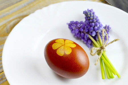 Easter egg and flowers on the plate