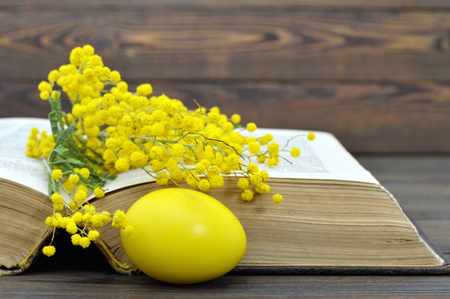 bible flower: Easter egg, old book and mimosa Stock Photo