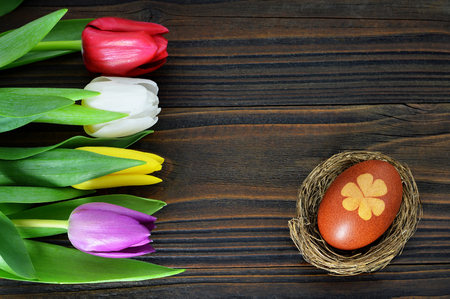 Easter egg in the nest and tulips on wooden background Stock Photo