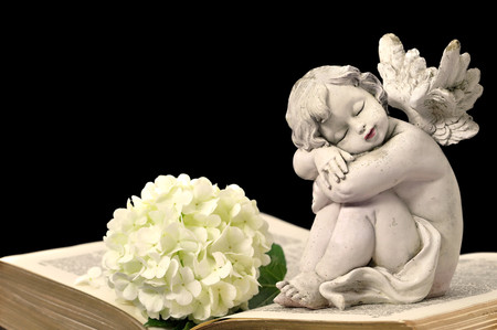 bible flower: Angel, white flower and old book