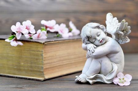 bible flower: Angel guardian sleeping on wooden background