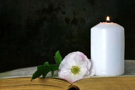 白のキャンドル、花とグランジ背景の本 写真素材
