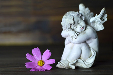 Angel and flower on wooden background