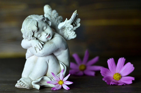 Angel guardian and flowers