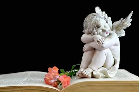 bible flower: Angel guardian sleeping