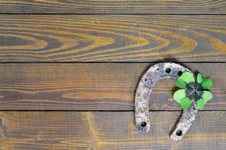 animal st  patricks day: Horseshoe and lucky clover on wooden background