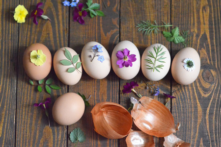 Coloring Easter eggs with onion Stock Photo