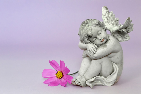 Guardian angel sleeping. Angel and flower