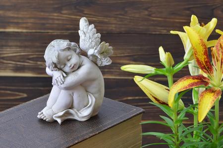 Little guardian angel sleeping on the book 写真素材