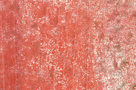 Mold on red wooden background Stock Photo