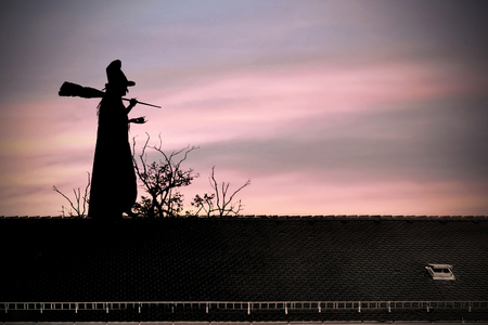 Halloween witch on the roof