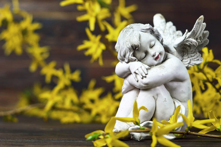 Angel guardian and forsythia flowers