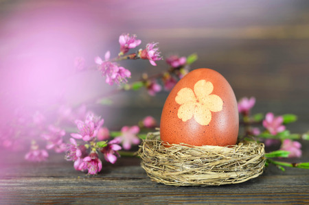 Easter egg and spring flowers on wooden background