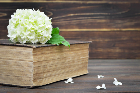 Flower and old book on wooden background