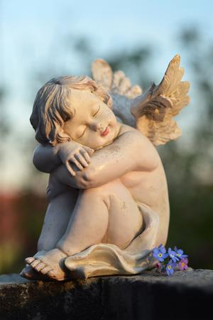 Ange gardien endormi et fleurs bleues Banque d'images