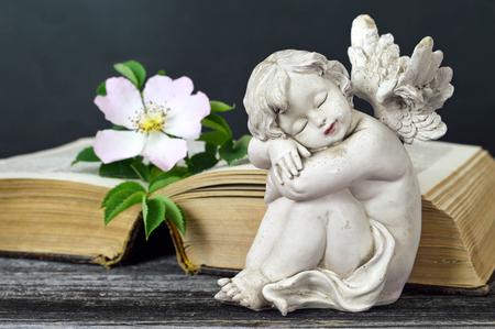 Little guardian angel sleeping Banco de Imagens